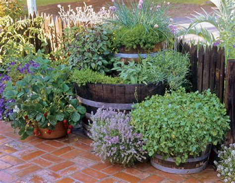 35 Herb Container Gardens  Pots & Planters {saturday