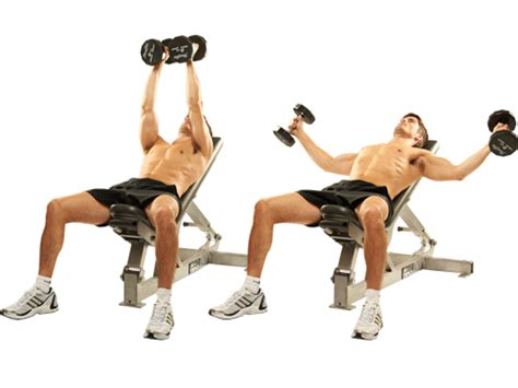 dumbbell routine for a sculpted chest rippednfit