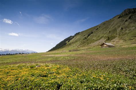 la maison dans la prairie lt chambon photographe