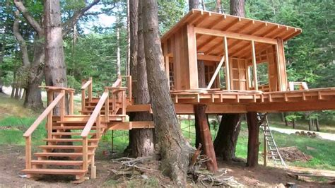 Tree House Roof Design-youtube