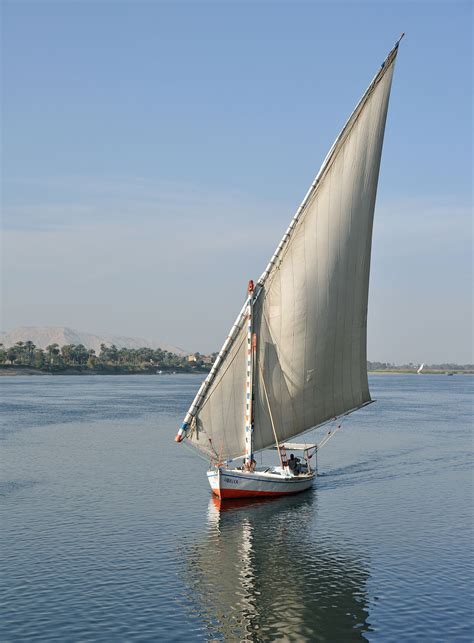 Best Latin Boat Names by Felucca Wikipedia