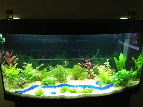 aquarium eau douce 260l