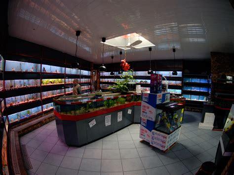 comment ouvrir un magasin d aquariophilie la r 233 ponse est sur admicile fr