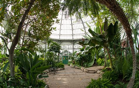 allan gardens toronto best of toronto 30 things we about our city in may