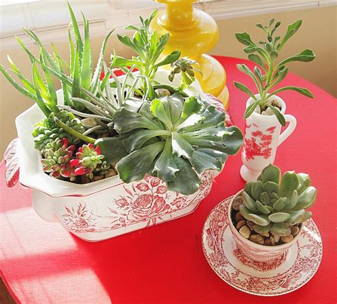 How To Make A Indoor Succulent Dish Gardenhow To Make A