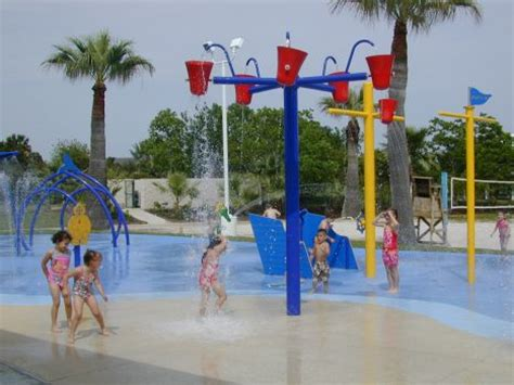 Garden Palm Beach Moody Gardens  Garden For Your