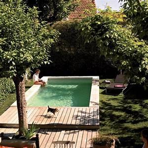 Mini Pool Design : 18 gorgeous plunge pools for tiny backyard home design and interior ~ Markanthonyermac.com Haus und Dekorationen