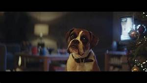 John Lewis Christmas advert is finally here and the star ...