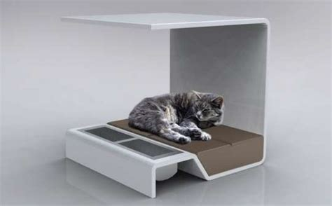 Canopy Pet Beds Pamper Your Feline Friend With The Modern