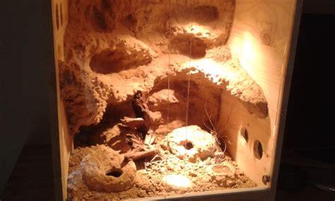 terrarium desertique decor de fond fait maison vente de mat 233 riel le monde des reptiles