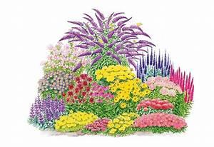 Japanisches Beet Anlegen : pflanzen set schmetterlings set 17 tlg kaufen otto ~ Markanthonyermac.com Haus und Dekorationen