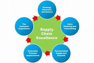 Curriculum   BBA Supply Chain Management