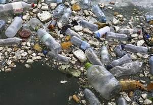 La bacteria que come plástico | Ciencia | EL MUNDO