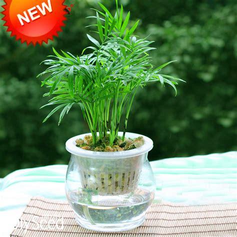 achetez en gros pot bambou en ligne 224 des grossistes pot bambou chinois aliexpress