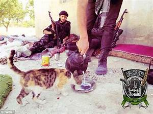 UN report says 'unprecedented' number of jihadists are ...