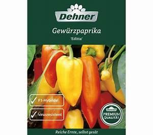 Paprika Pflanzen Pflege : dehner samen gew rzpaprika 39 editta 39 dehner garten center ~ Markanthonyermac.com Haus und Dekorationen