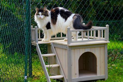 maison pour chat exterieur trendyyy