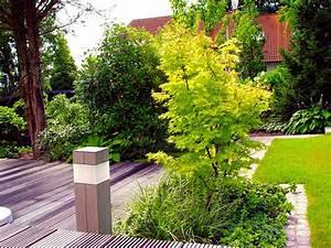 Winterpflanzen Für Den Garten : 7 tipps f r kleine b ume ~ Whattoseeinmadrid.com Haus und Dekorationen