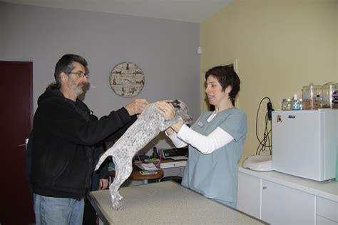 salle de consultations v 233 t 233 rinaire clinique akkolytes andr 233 de cubzac bordeaux