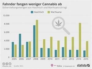 Wie Viele Pflastersteine Pro M2 : cannabis legalisierung wie legales kiffen aussehen k nnte ~ Markanthonyermac.com Haus und Dekorationen