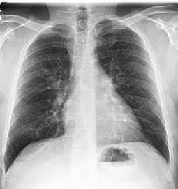 Department of Radiological Sciences - Diagnostic Radiology