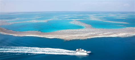 Boat From Hamilton Island To Airlie Beach by Great Barrier Reef Cruises From Whitsundays Experience Oz