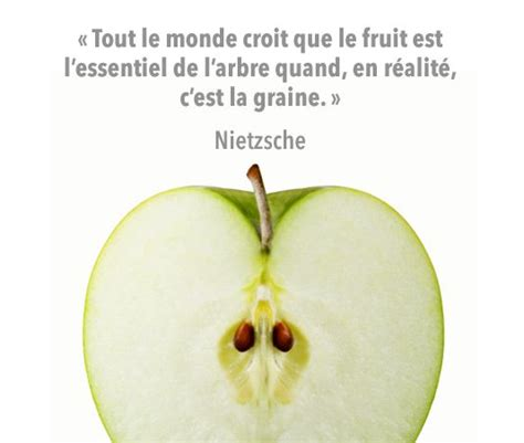 171 tout le monde croit que le fruit est l essentiel de l arbre quand en r 233 alit 233 c est la graine