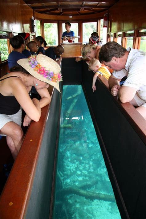 Glass Bottom Boat Austin Tx by San Marcos Tx Glass Bottom Boat Not Much Marine Life To