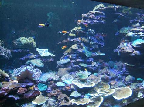 sea world aquarium durban south africa address phone