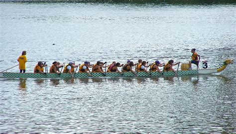 Row The Dragon Boat by Free Images Paddle Vehicle Rowing Boat Competition