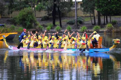 Dragon Boat Festival Sydney by Forest Lake Multicultural Dragonboat Festival Brisbane