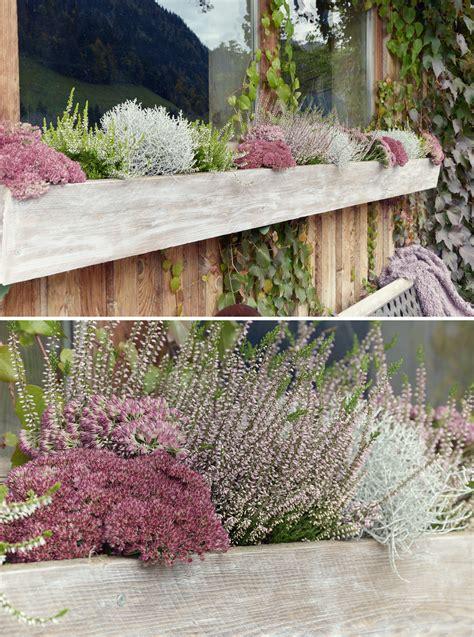 Herbstdekoration Für Hof Und Garten  Depot Blog