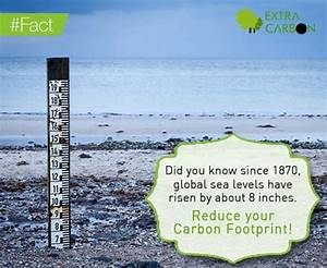 Did you know since 1870, global sea levels have risen by ...