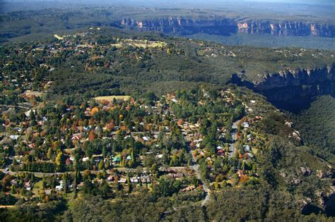 photo gallery tree masterplan blue mountains your say