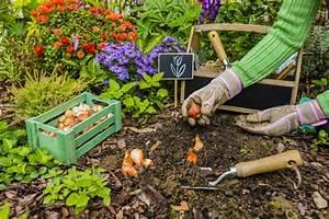 Garten Was Tun Im März : was tun damit die tulpen bl hen tipps zur pflege ~ Markanthonyermac.com Haus und Dekorationen