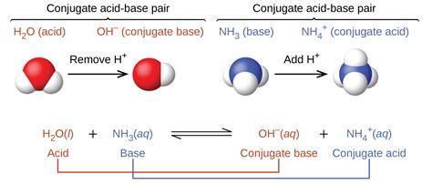 141 Brønstedlowry Acids And Bases Chemistry