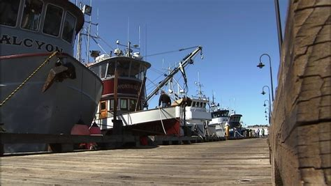 Fishing Boat Jobs Seattle by Tug Of War Grows Over Portion Of Seattle S Fishing Fleet