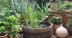 Was Hilft Gegen Fliegen Auf Der Terrasse : tipps gegen algen im mini teich mein sch ner garten ~ Markanthonyermac.com Haus und Dekorationen